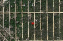 Land Equity - Land for sale-423 Neisman Ave.,
