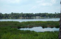 Land Equity - Land for sale-884 Lake Shore Ter.,