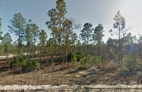 Land Equity - Land for sale-453 Rose St.,
