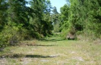 Land Equity - Land for sale-213 Fawn Trail